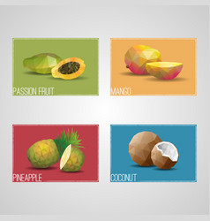 tropical organic fruits cards vector image