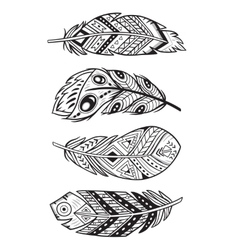 outline abstract boho feathers on a white vector image vector image