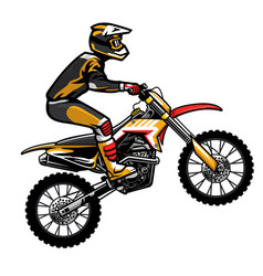 motocross rider jumping vector image