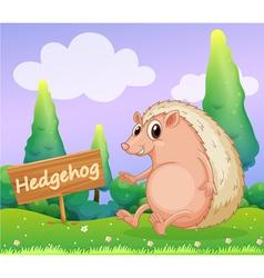 A hedgehog beside a wooden signage vector