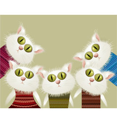Cats in pullovers vector image
