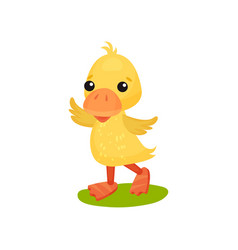 Cute funny little yellow duckling character vector