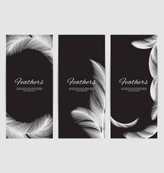 feathers banners template realistic white swan vector image