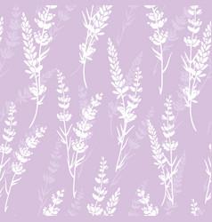Lavender flowers light purple silhouettes vector