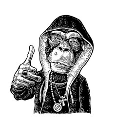 Monkey raper dressed in hoodie necklace dollar vector