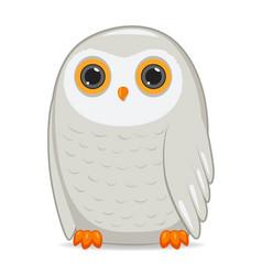 polar owl bird on a white background vector image