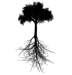 tree with roots silhouette vector image