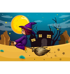 A witch riding in her broom vector image vector image