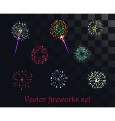 festive patterned firework isolated on the vector image vector image