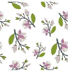 hand drawm magnolia seamless pattern vector image