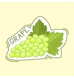 Bunche of grape badge vector