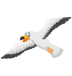 Cartoon smiling seagull vector image