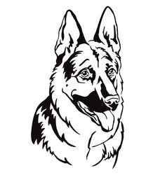 Decorative portrait german shepherd vector
