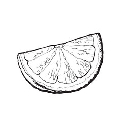 Quarter segment piece of ripe grapefruit orange vector