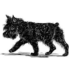 Walking terrier vector