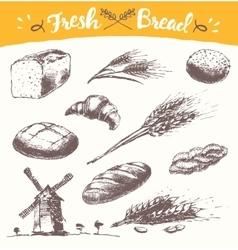 Set fresh bread drawn wheat vector image vector image