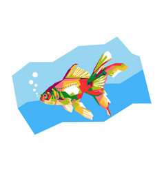 colorful goldfish vector image