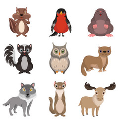 Cute forest animals and birds set chipmunk vector