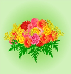 Festive bouquet gerbera and roses green background vector