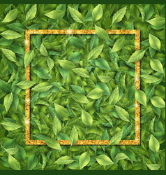 frame leaf background vector image