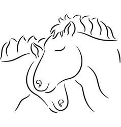 Horses in love vector