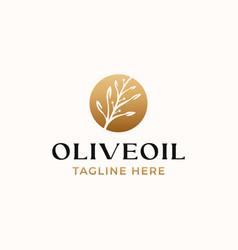 olive leaf golden gradient color logo template vector image