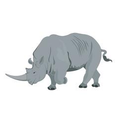 Rhinoceros or rhinocerotidae vector