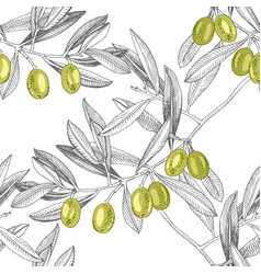seamless pattern with green olives and olive vector image