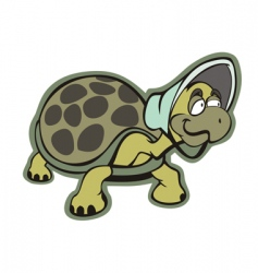 old turtle vector image vector image