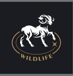 A ram or wild goat vector