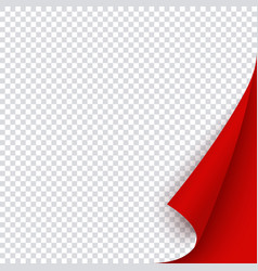 red banner template with curled corner square vector image