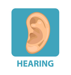 sensitive hearing icon flat style ear isolated vector image