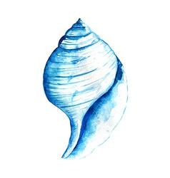 Watercolor Seashell vector image