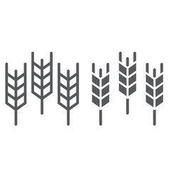 wheat line and glyph icon grain and gluten vector image