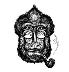 Hand-drawn portrait of funny monkey with glasses vector