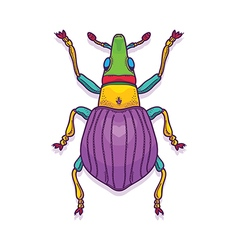 Colorful Beetle Bug Insect vector image