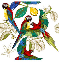 Beautiful tropical pattern with colorful parrots vector