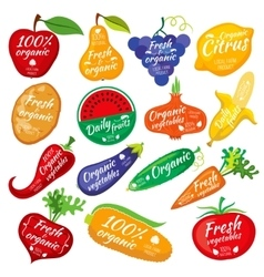 Fruit and vegetables color silhouettes logo for vector