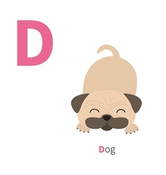 Letter D Dog pug mops Zoo alphabet English abc vector image