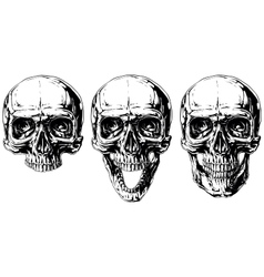 Set of graphic black and white human skull tattoo vector image