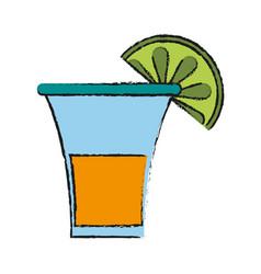 tequila shot drink vector image