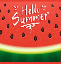 watermelon with text hello summer vector image