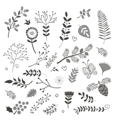 Elegant collection with flowers leaves and twigs vector
