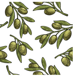 seamless pattern olives on branch with leaves vector image vector image
