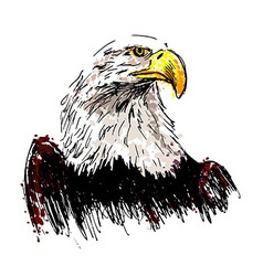 Colored hand drawing eagle vector image vector image