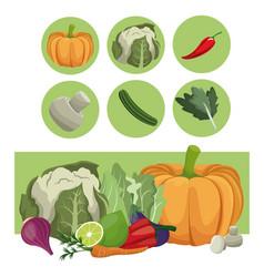 Vegetables fresh raw ingredients vector