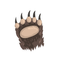 Bear animal paw on a white vector