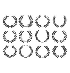 branches with leaves wreath set vector image