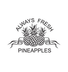 emblem of pineapple fruit vector image