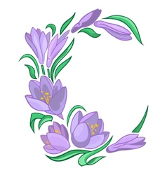 Frame from abstract crocuses vector image